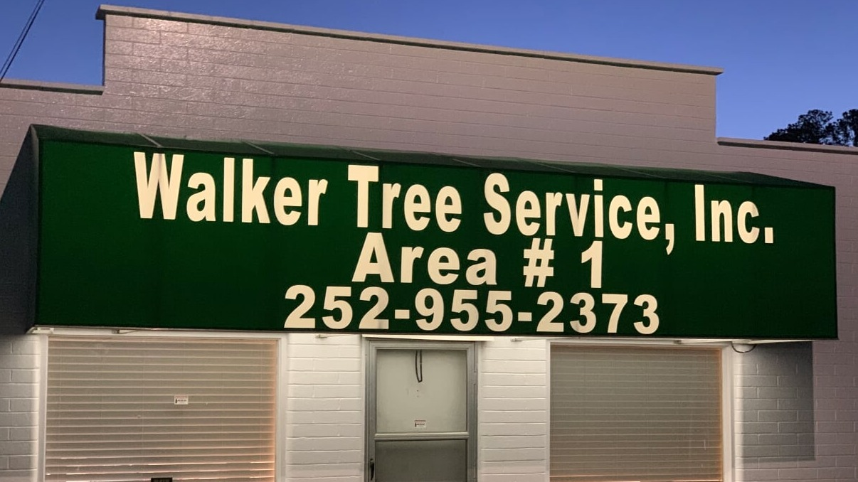 emergency tree removal in Rocky Mount, NC